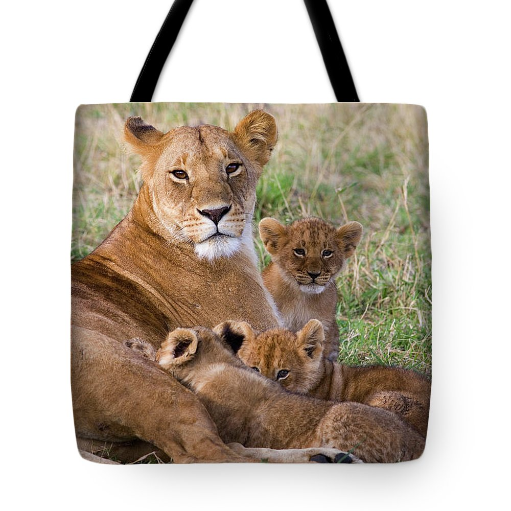 00761783 Tote Bag featuring the photograph African Lioness And Young Cubs by Suzi Eszterhas