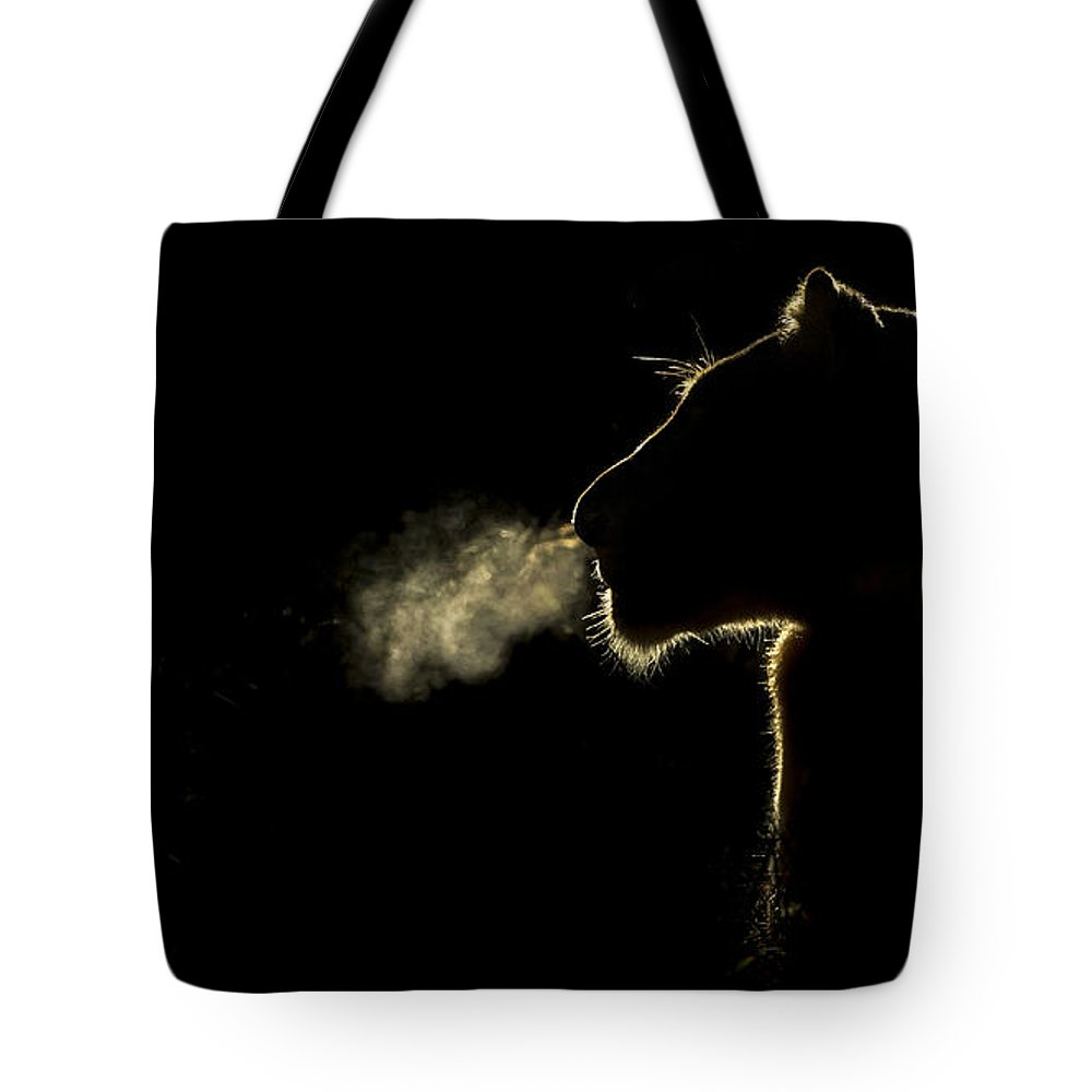 Nis Tote Bag featuring the photograph African Lioness Breath Sabi Sands South by Brendon Cremer