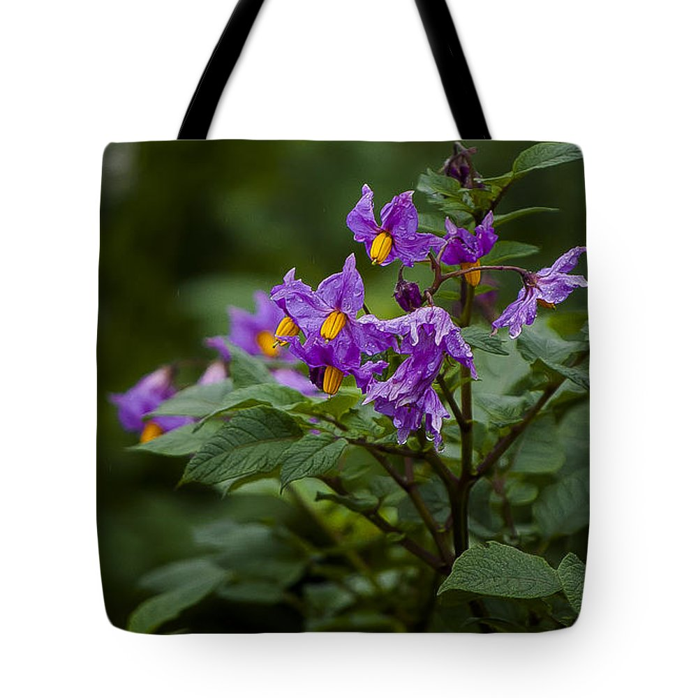 Rwanda Tote Bag featuring the photograph African Violets by Paul Weaver