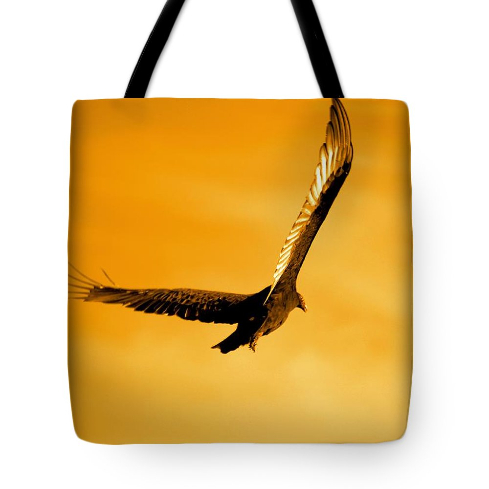 Glow Tote Bag featuring the photograph After Glow by Bonfire Photography