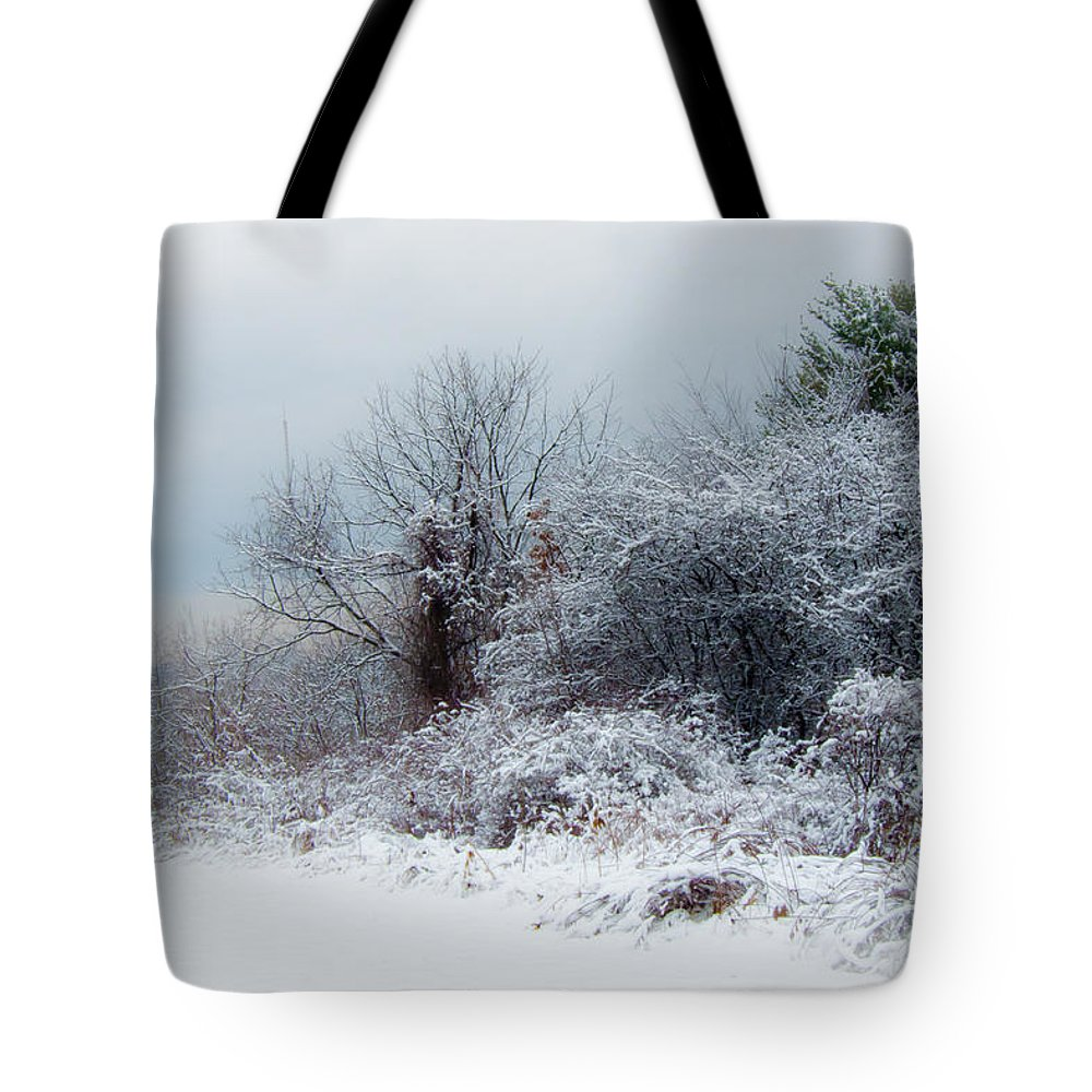 Landscape Tote Bag featuring the photograph after Snow Storm by Jiayin Ma