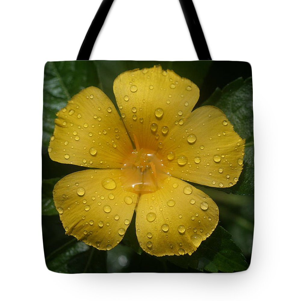 Flower Tote Bag featuring the photograph After The Rain by April Wietrecki Green