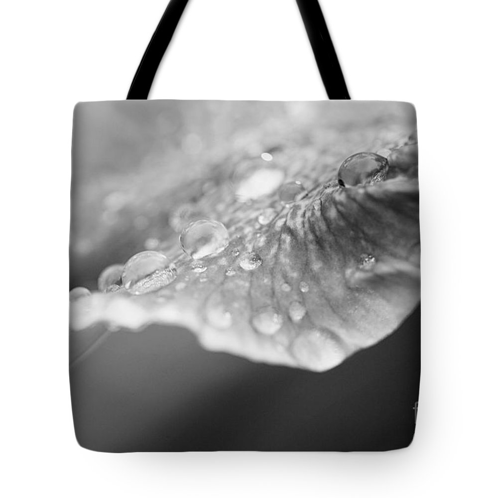 Abstract Tote Bag featuring the photograph After The Rain by Erin Johnson