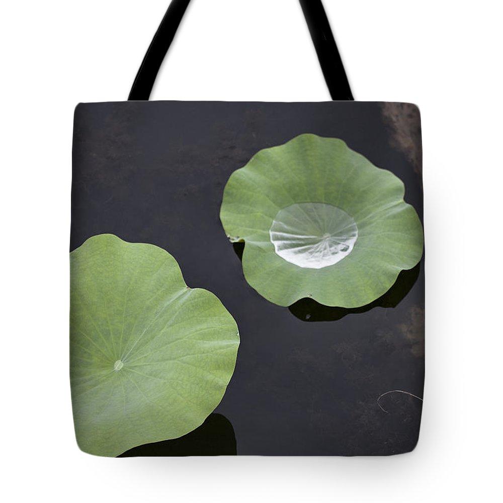 Rain Tote Bag featuring the photograph After The Rain- Gungarre Billabong by Douglas Barnard