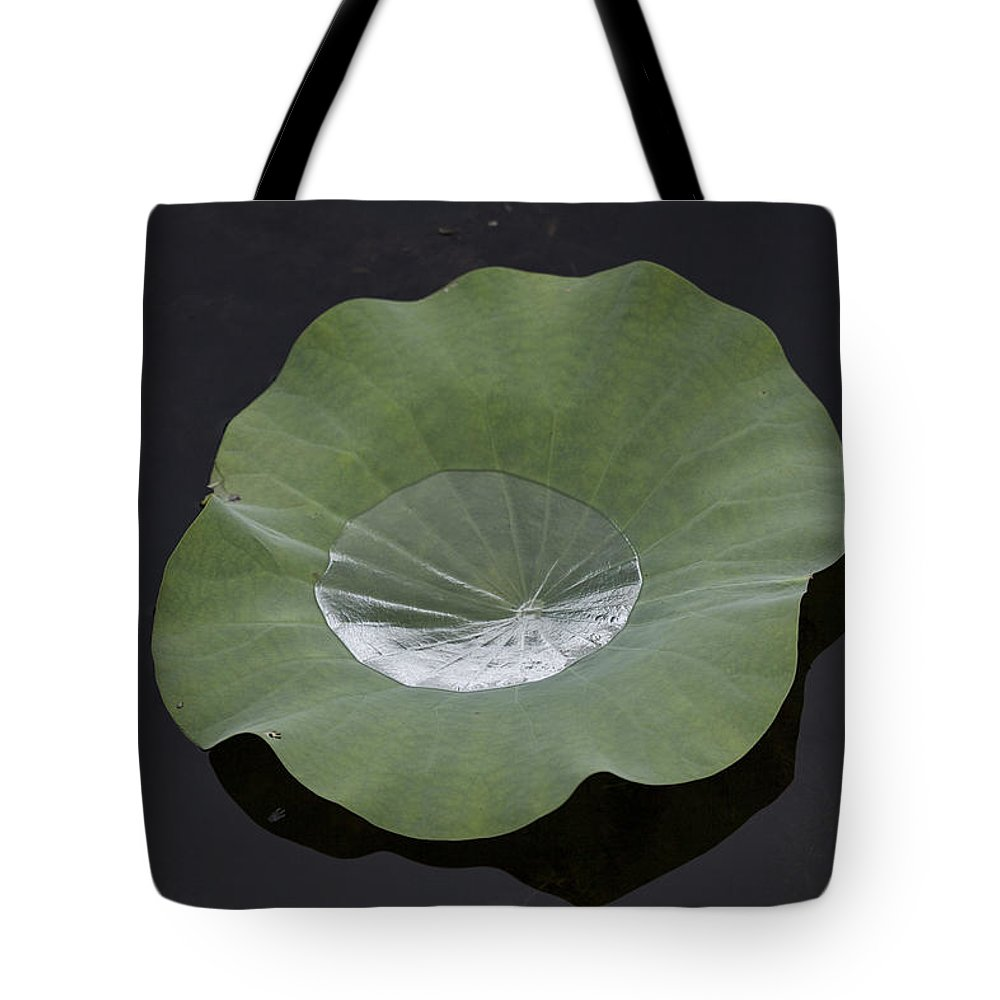 Rain Tote Bag featuring the photograph After The Rain- Gungarre Billabong V2 by Douglas Barnard