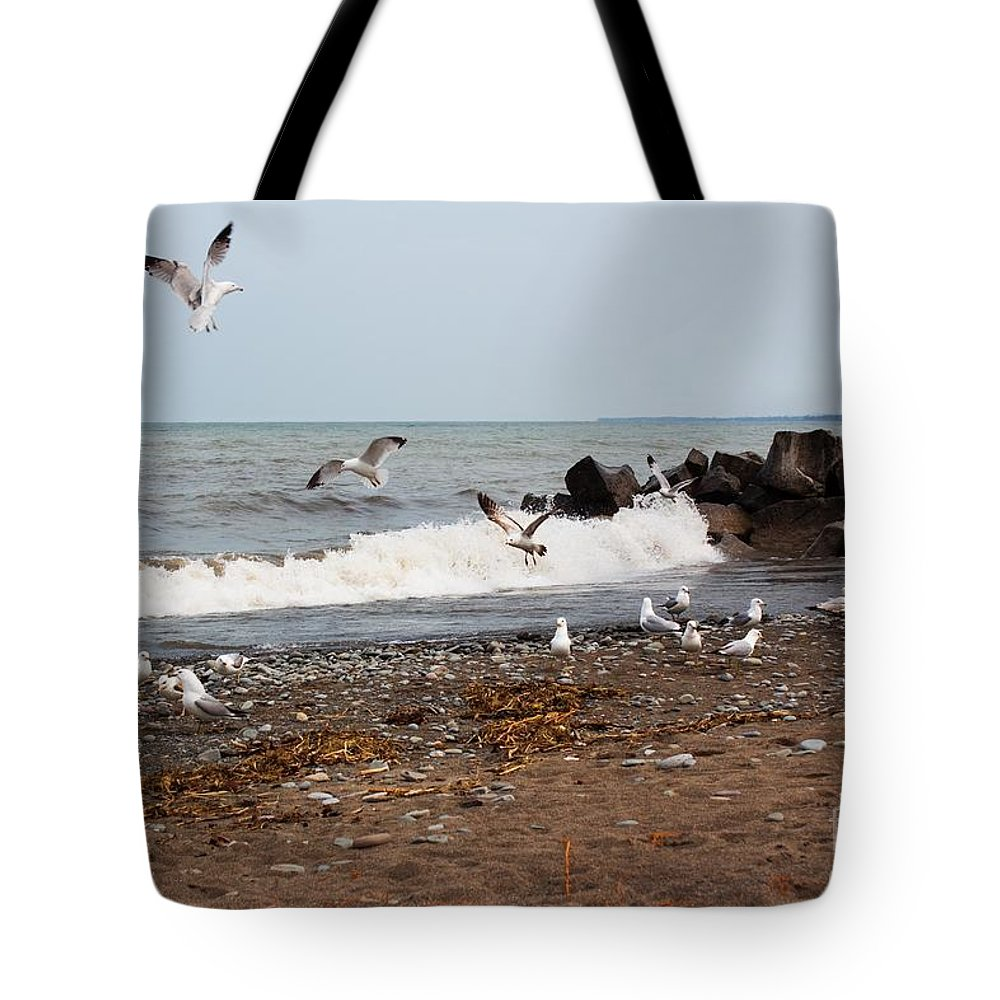 Gulls Tote Bag featuring the photograph After The Spring Thaw by Barbara McMahon
