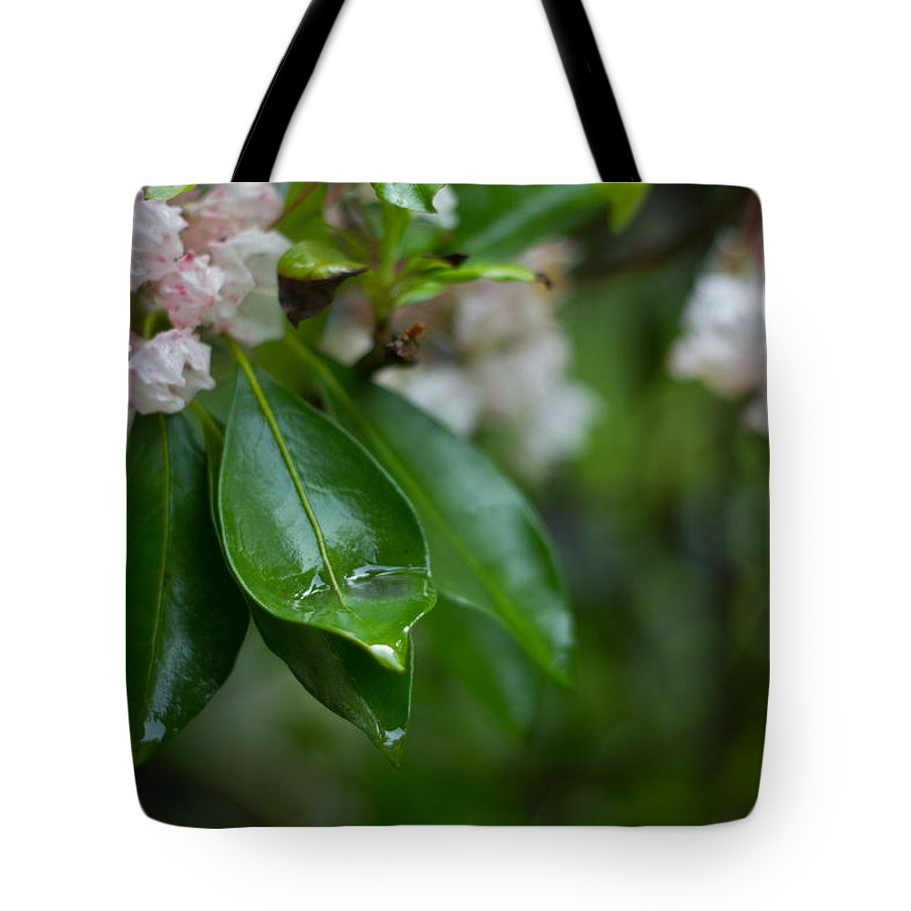 Rhododendron Tote Bag featuring the photograph After The Storm by Patrice Zinck