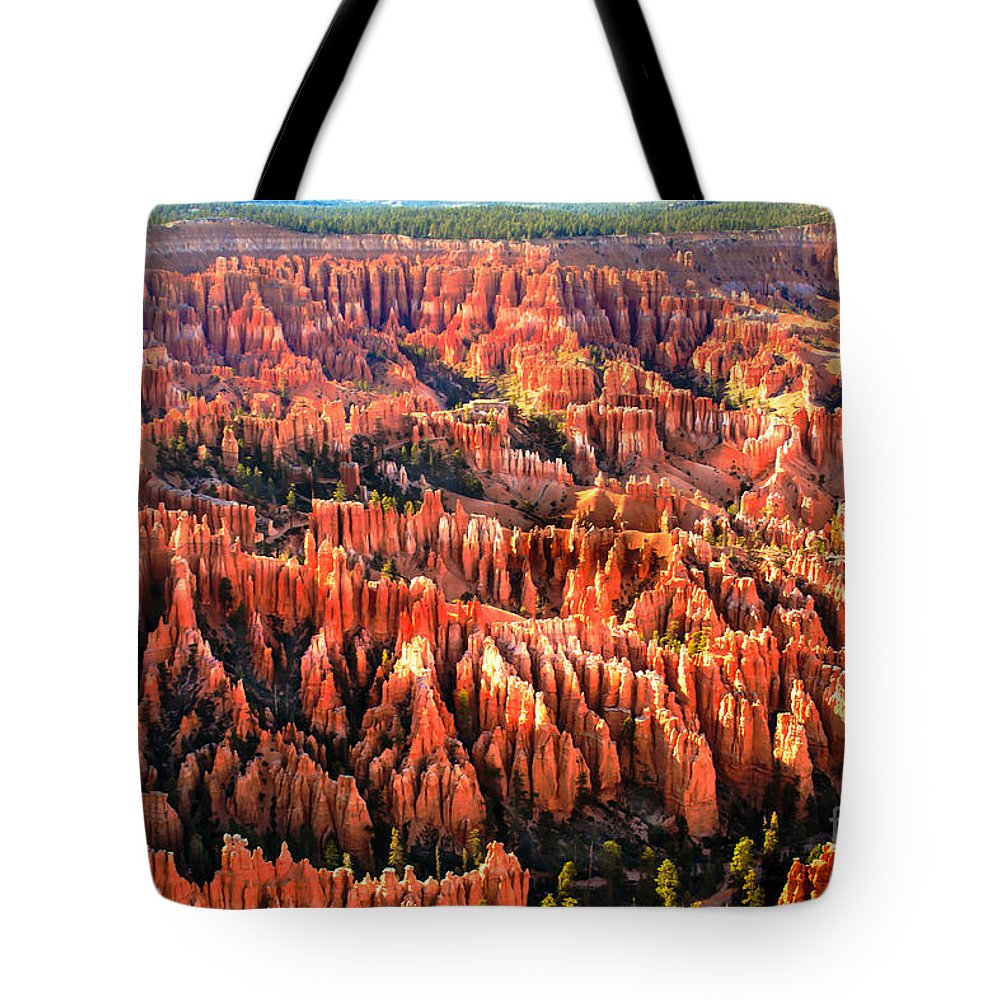 Bryce Canyon Tote Bag featuring the photograph Afternoon Hoodoos by Robert Bales