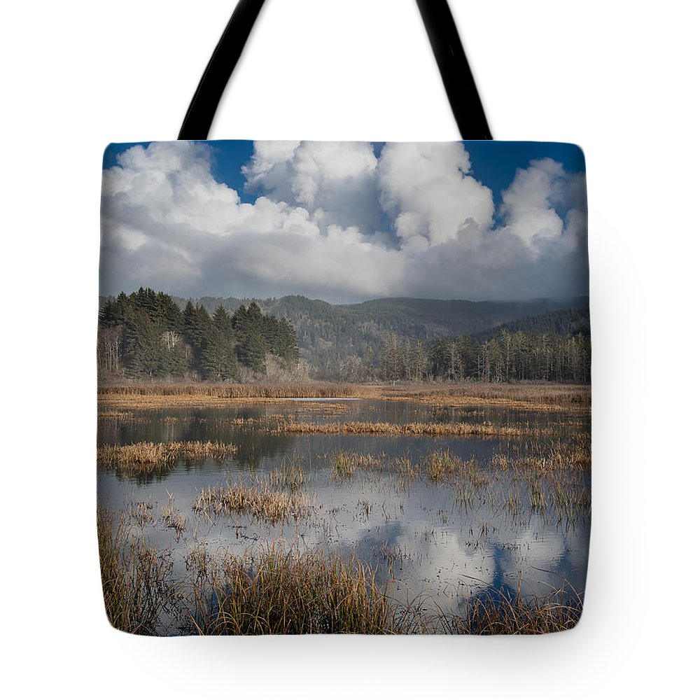 Dry Lagoon Tote Bag featuring the photograph Afternoon Reflections by Greg Nyquist