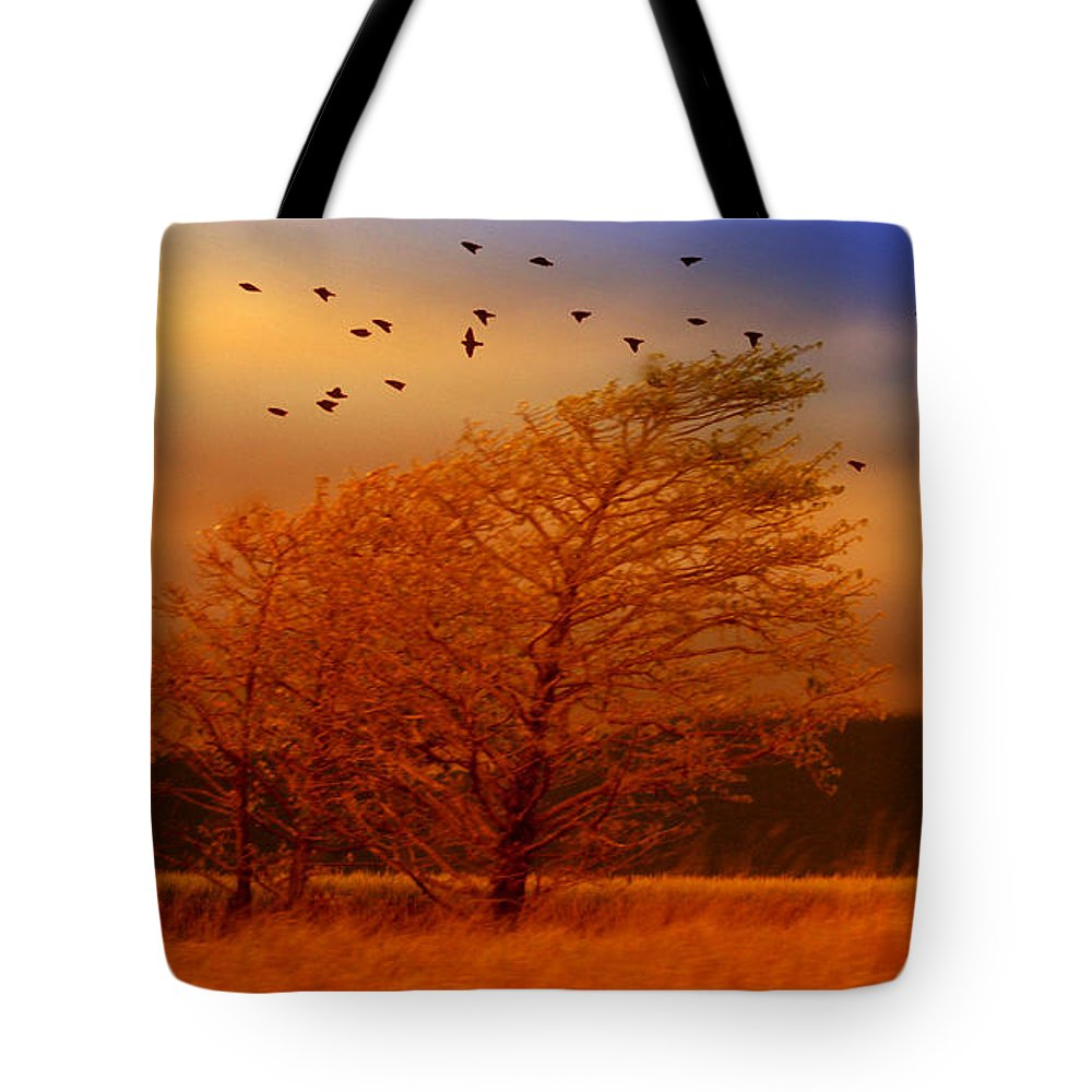 Landscape Tote Bag featuring the photograph Against The Wind by Holly Kempe