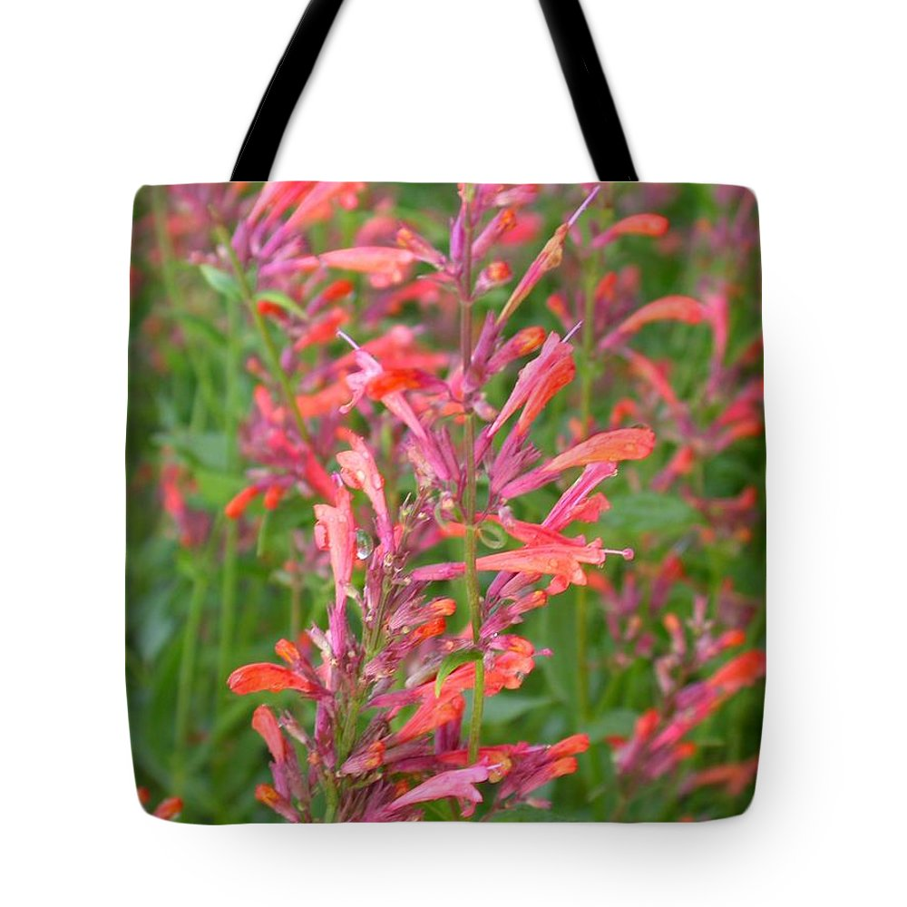 Agastache Rupestris Tote Bag featuring the photograph Agastache Field by Cynthia Wallentine