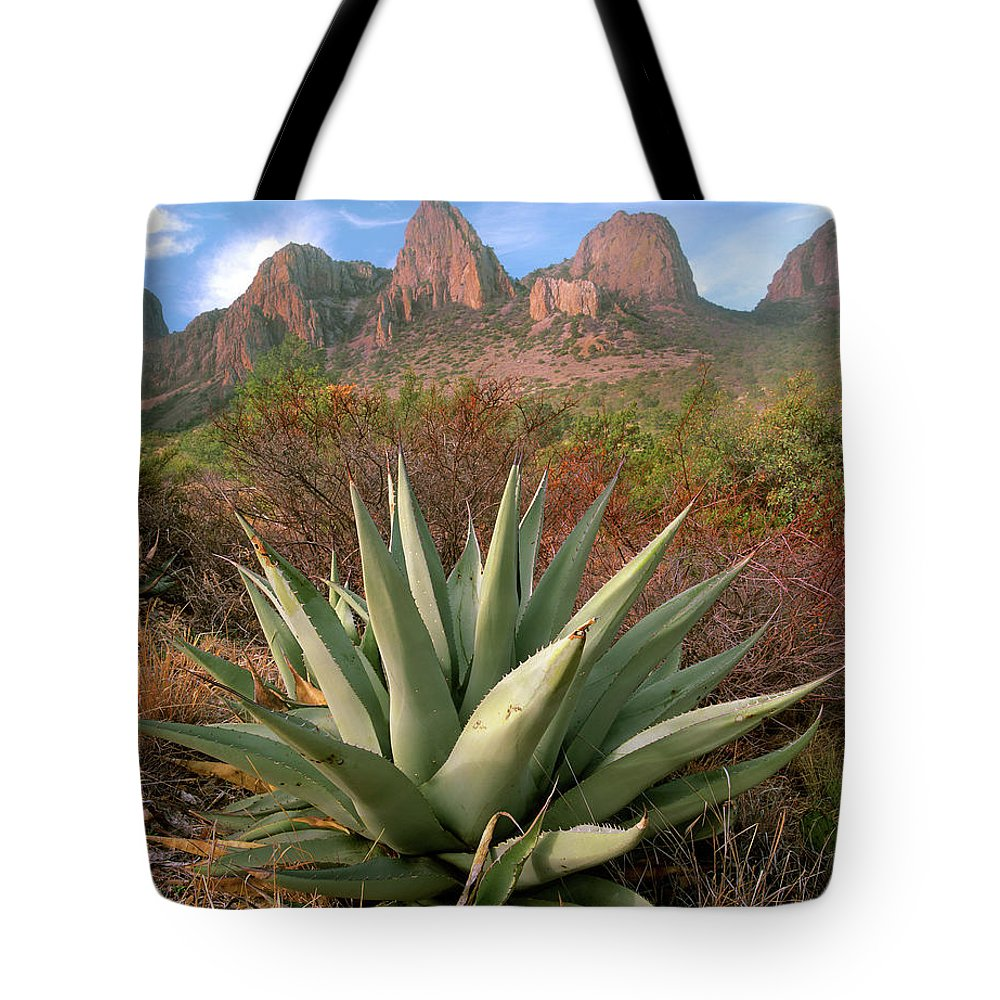 Agave Tote Bag featuring the photograph Agave And The Chisos Mountains by Tim Fitzharris
