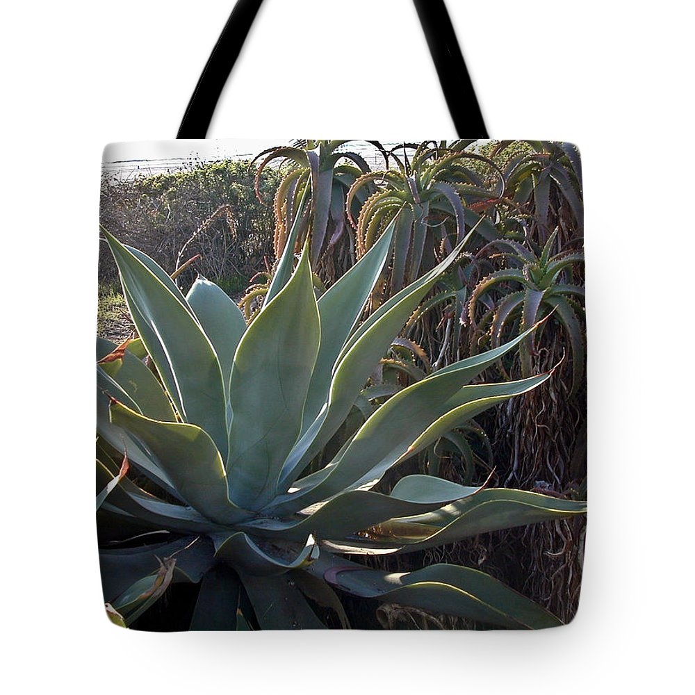 Agave Tote Bag featuring the photograph Agave by Douglas Barnett