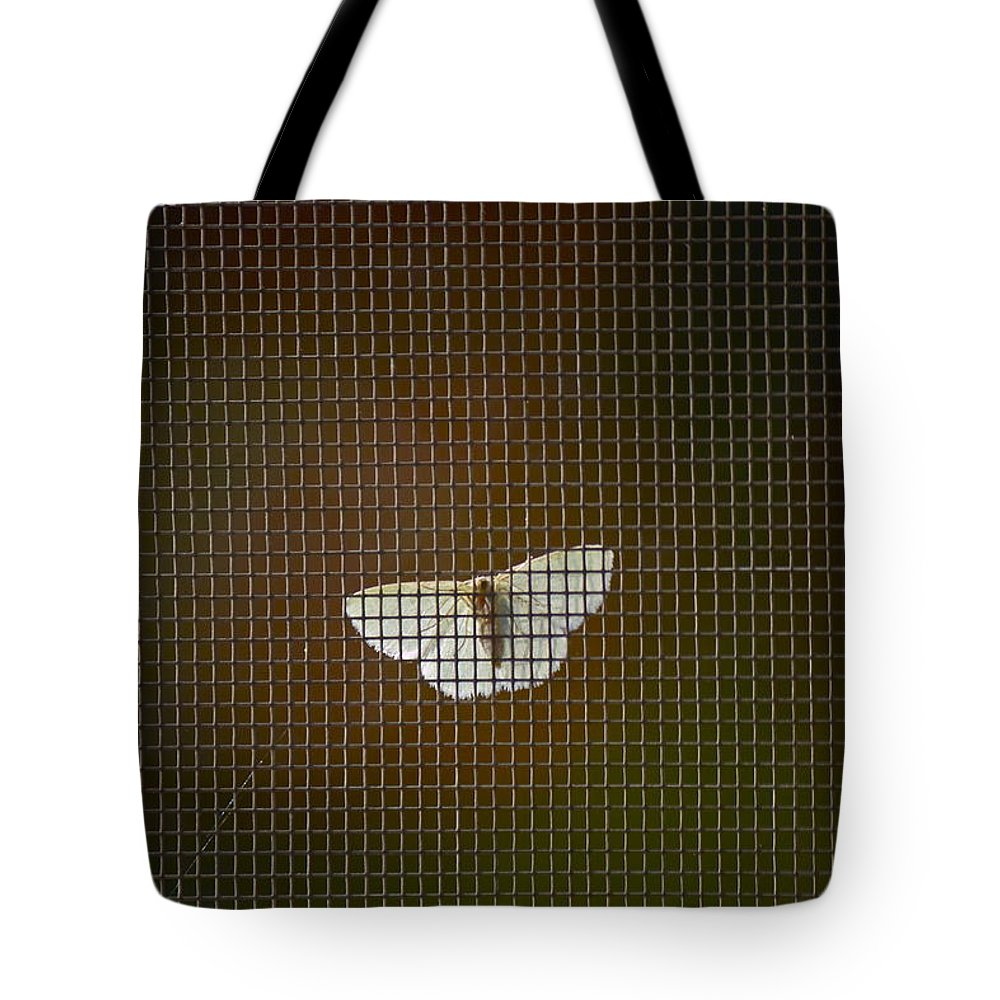 Moth Tote Bag featuring the photograph Airing Out by Sheryl Bergman