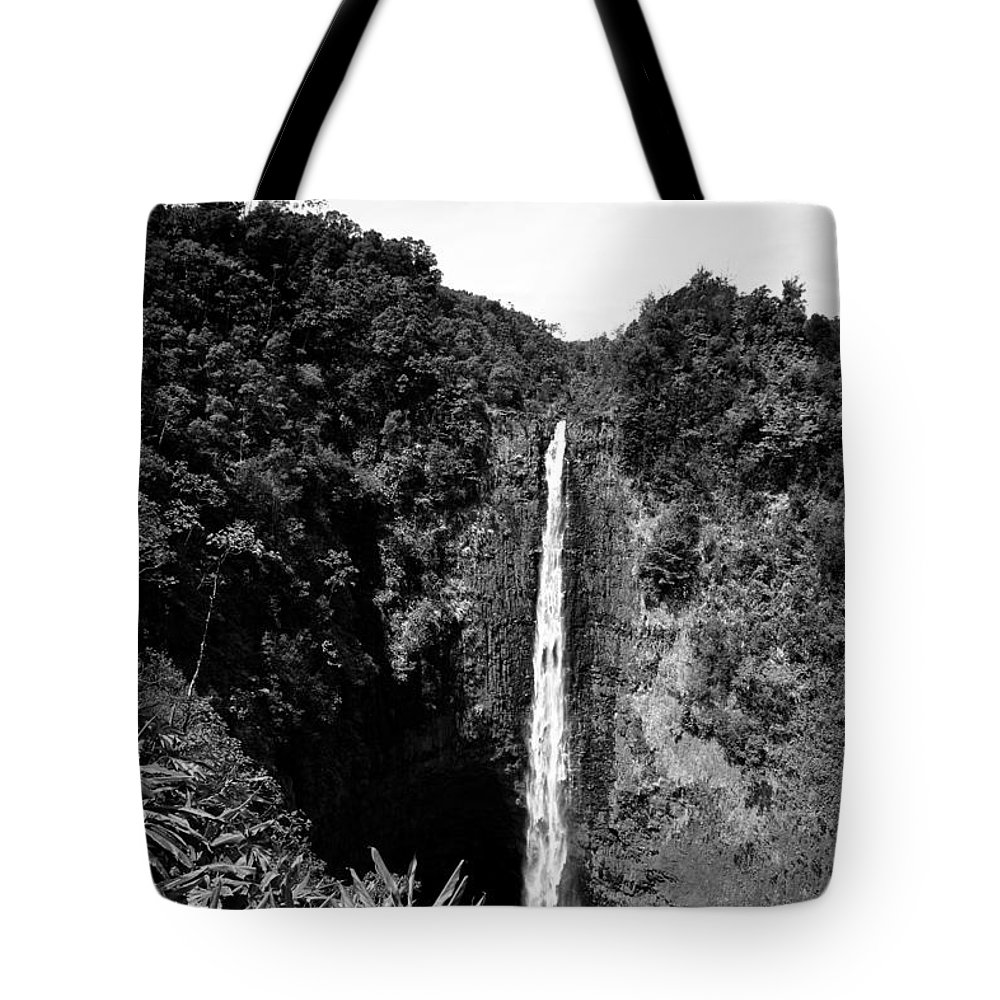 29-pfs0162 Tote Bag featuring the photograph Akaka Falls - Bw by Greg Vaughn - Printscapes