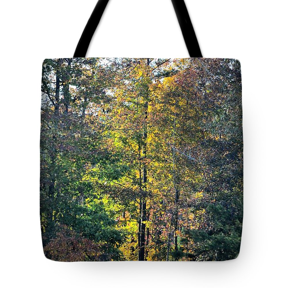 Alabama Forest In Autumn 2012 Tote Bag featuring the photograph Alabama Forest In Autumn 2012 by Maria Urso