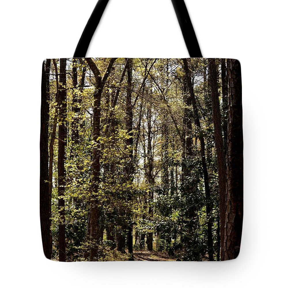 Alabama Woodlands In Spring 2013 Tote Bag featuring the photograph Alabama Woodlands In Spring 2013 by Maria Urso