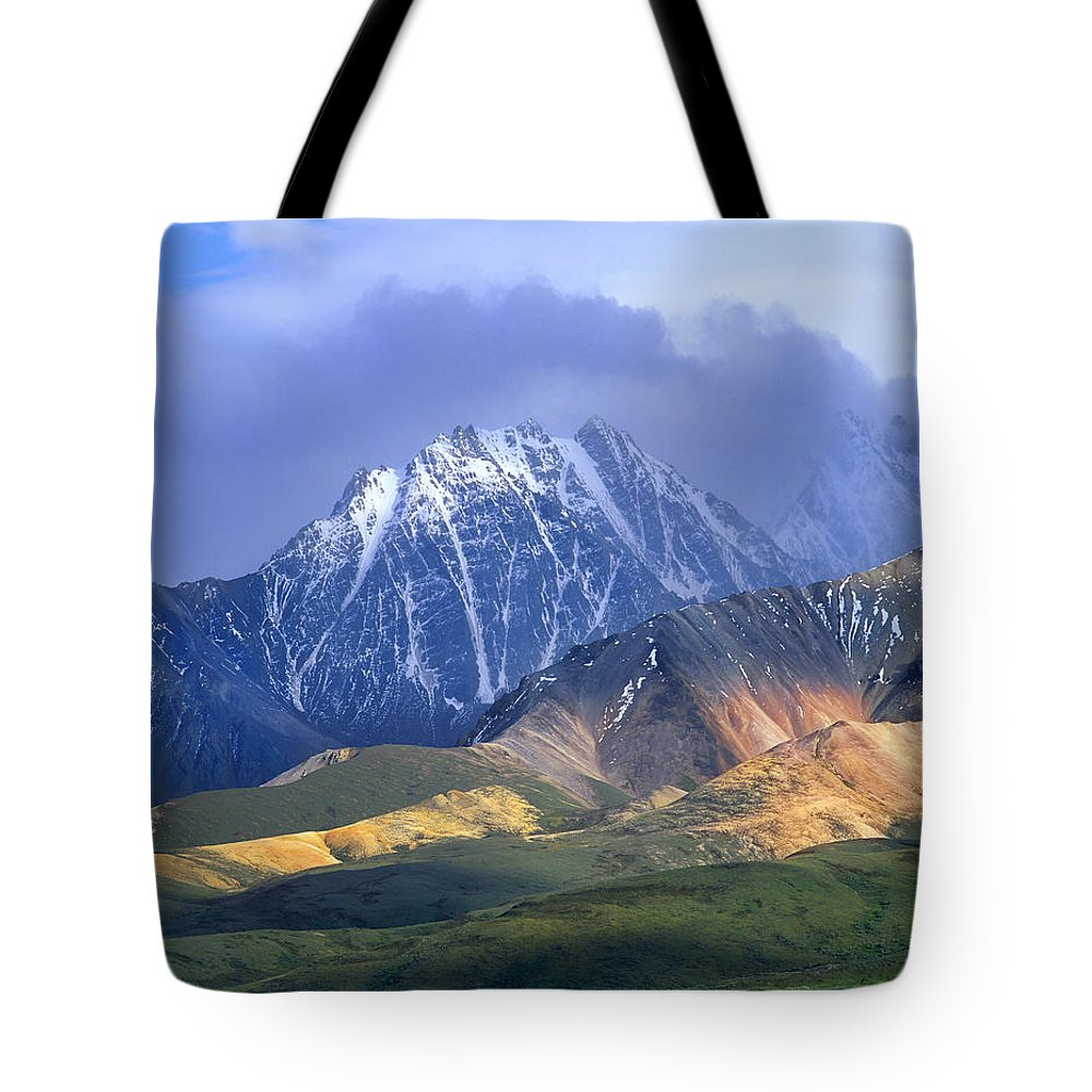 00175652 Tote Bag featuring the photograph Alaska Range And Foothills Denali by Tim Fitzharris