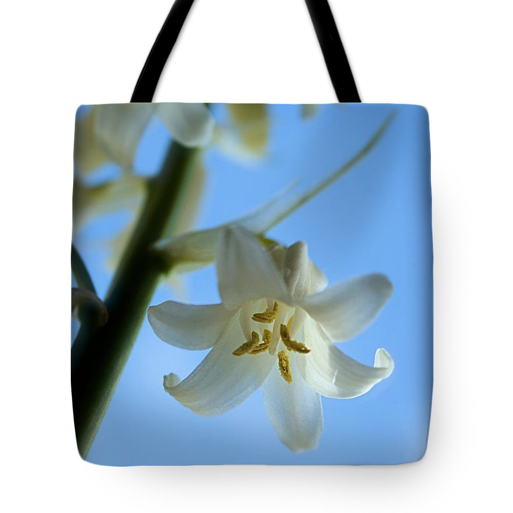 White Tote Bag featuring the photograph Albino Bluebells 2 by Brian Raggatt