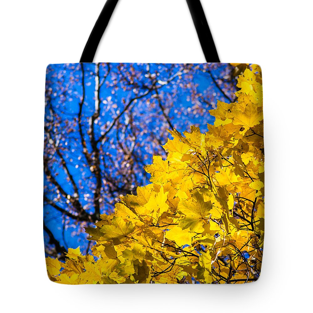 Abstract Tote Bag featuring the photograph Alchemy Of Nature - Golden Streams by Alexander Senin
