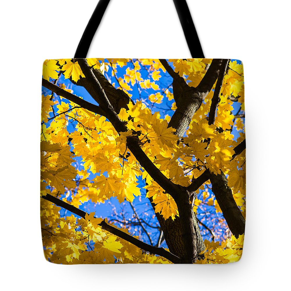Abstract Tote Bag featuring the photograph Alchemy Of Nature - Refining The Sungold by Alexander Senin
