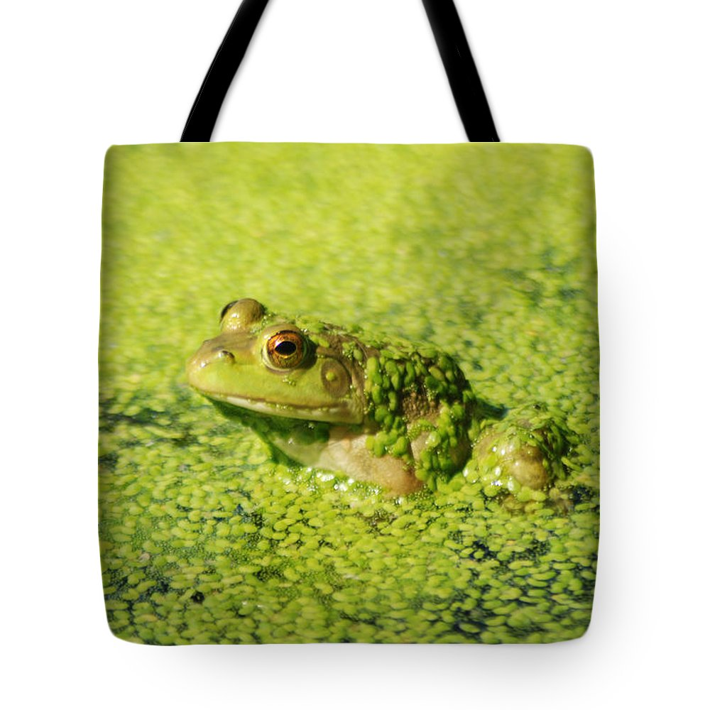 Green Algae Tote Bag featuring the photograph Algae Covered Frog by Optical Playground By MP Ray