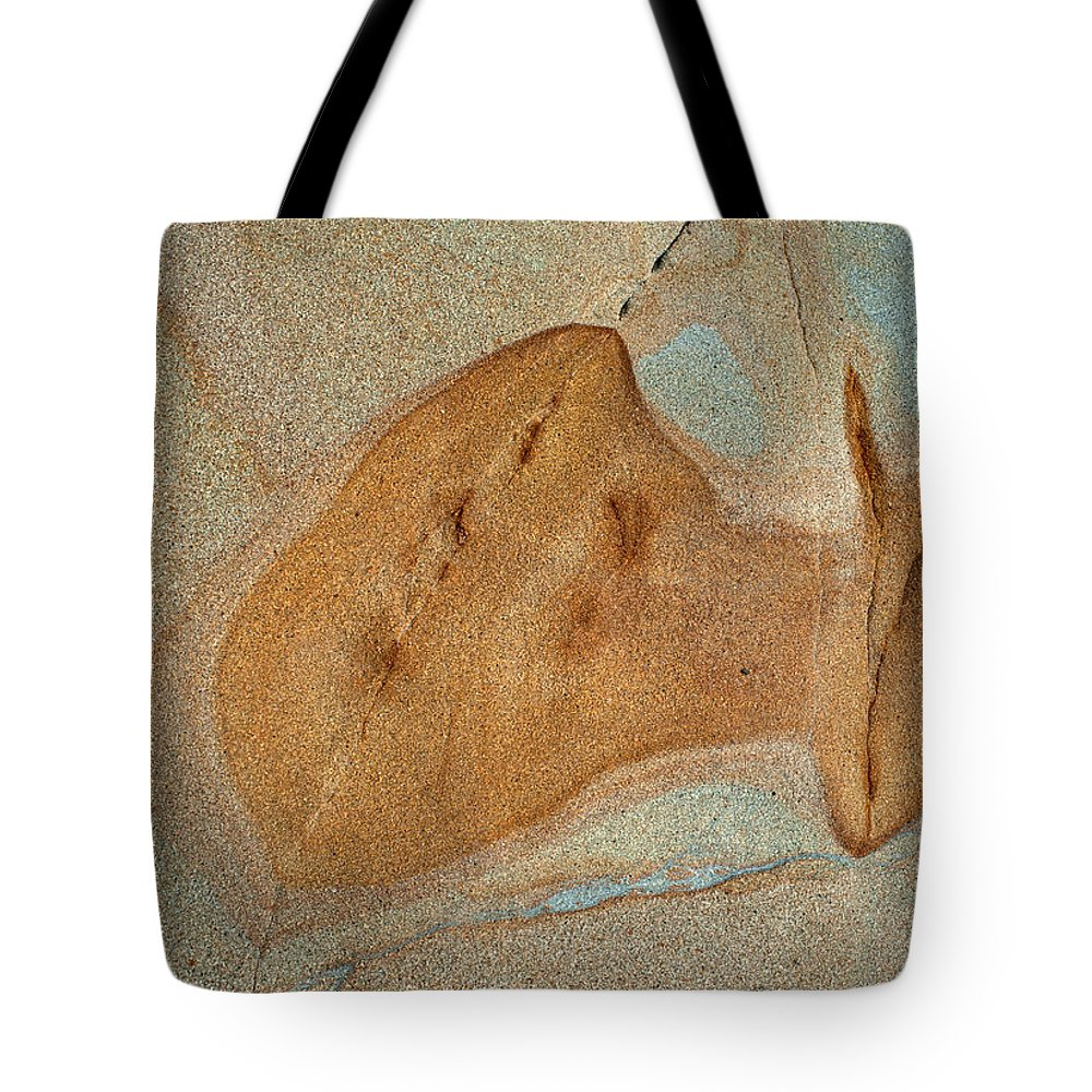 Abstract Tote Bag featuring the photograph Aliens? by Catherine Lau