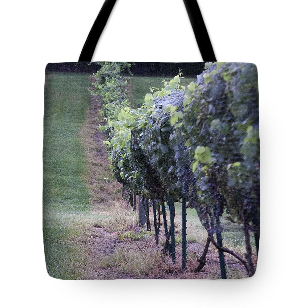 Women Tote Bag featuring the photograph All In A Row by Lee Hartsell