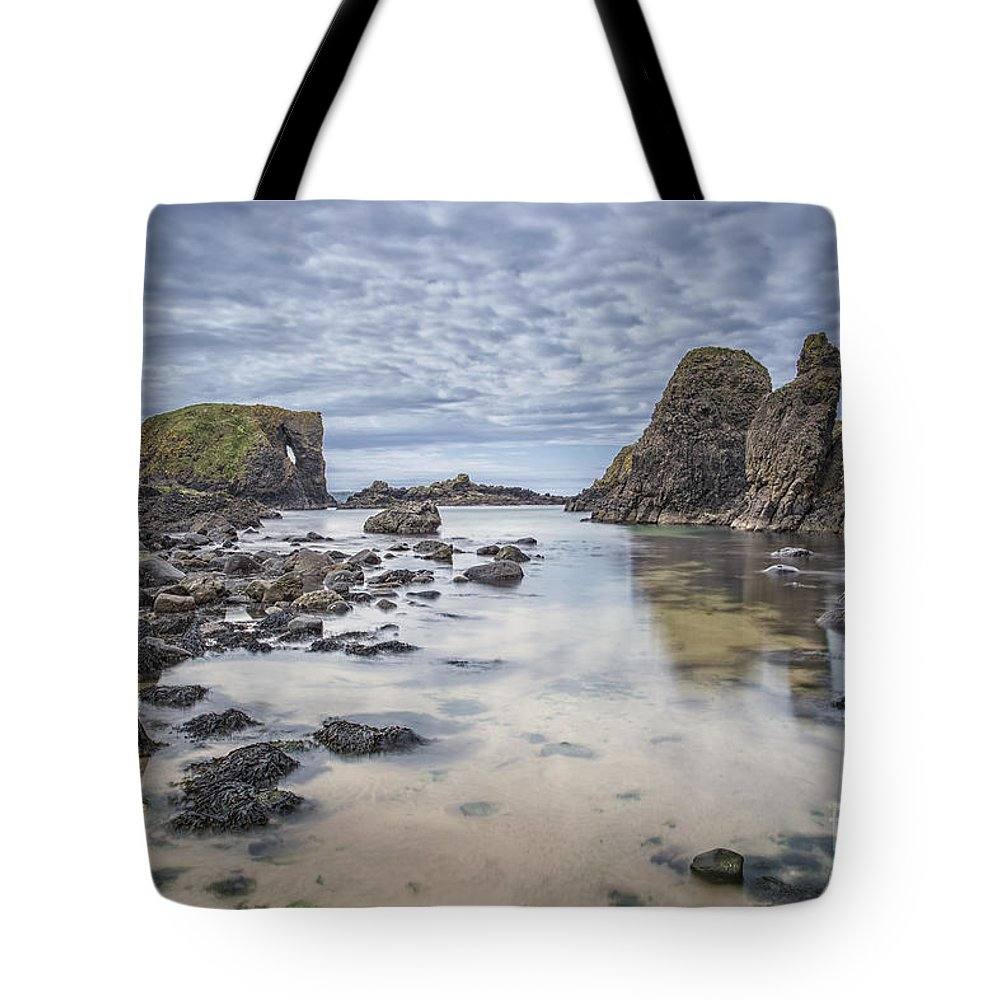 Elephant Tote Bag featuring the photograph All Is Dream And Everything Is Real by Evelina Kremsdorf