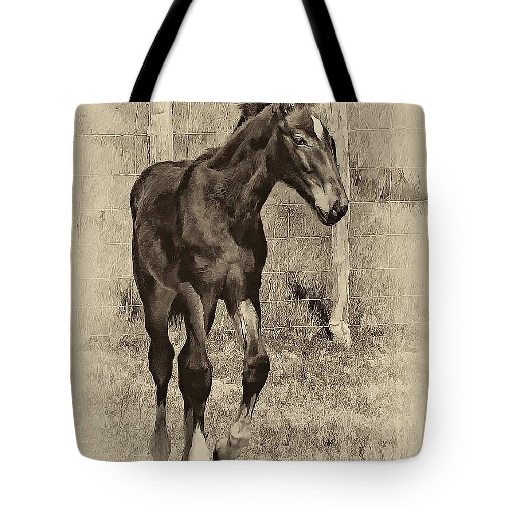 Horse Tote Bag featuring the photograph All Legs Sepia by Steve Harrington