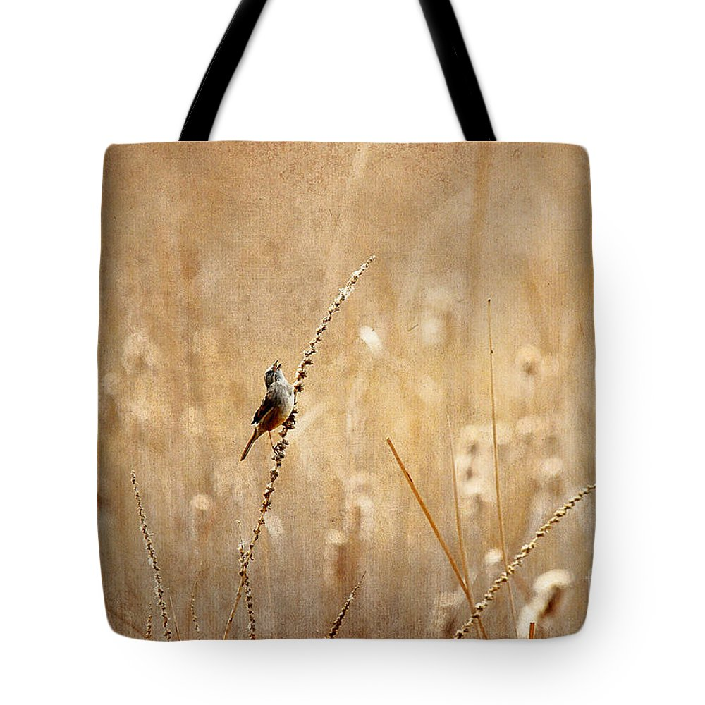Bird Tote Bag featuring the photograph All Rejoicing by Lois Bryan