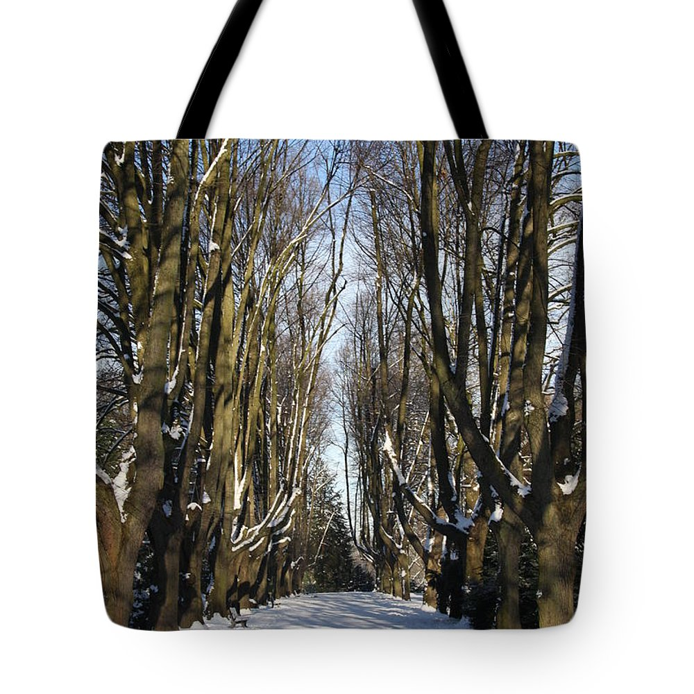 Trees Tote Bag featuring the photograph Alley In The Snow by Christiane Schulze Art And Photography