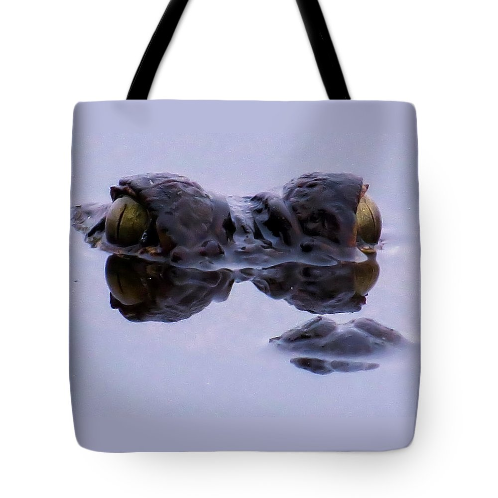 Eyes Tote Bag featuring the photograph Alligator Eyes On The Foggy Lake by Zina Stromberg