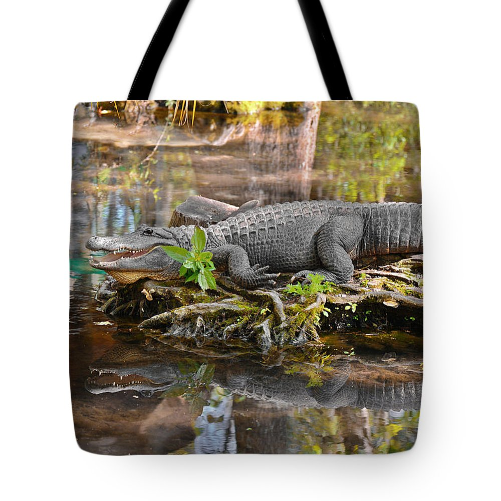 American Tote Bag featuring the photograph Alligator Mississippiensis by Christine Till