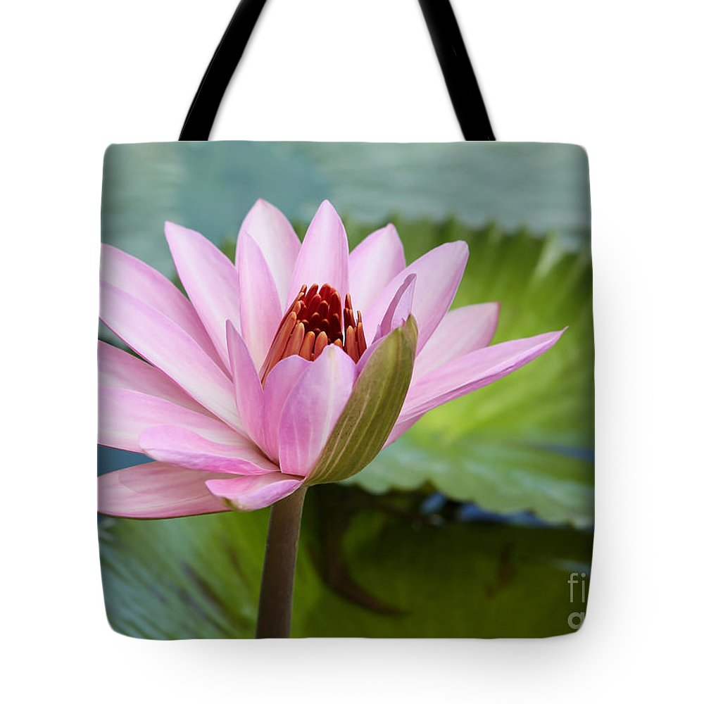 Landscape Tote Bag featuring the photograph Almost In Full Bloom by Sabrina L Ryan