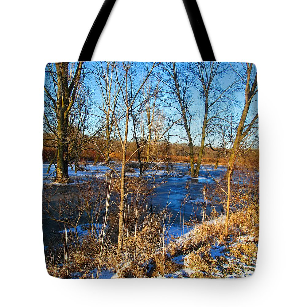 Snow Tote Bag featuring the photograph Almost Spring 2015 by Tina M Wenger