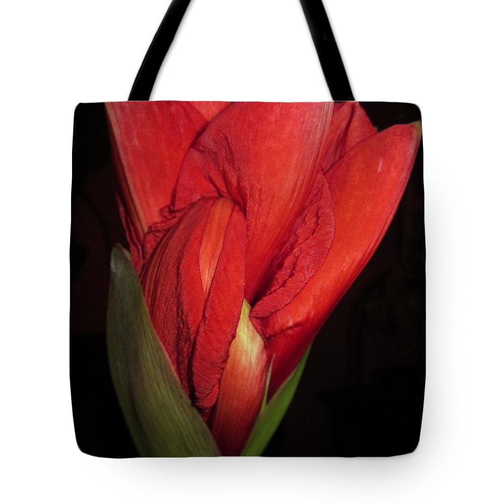 Amaryllisbud Tote Bag featuring the photograph Almost There by Rosita Larsson