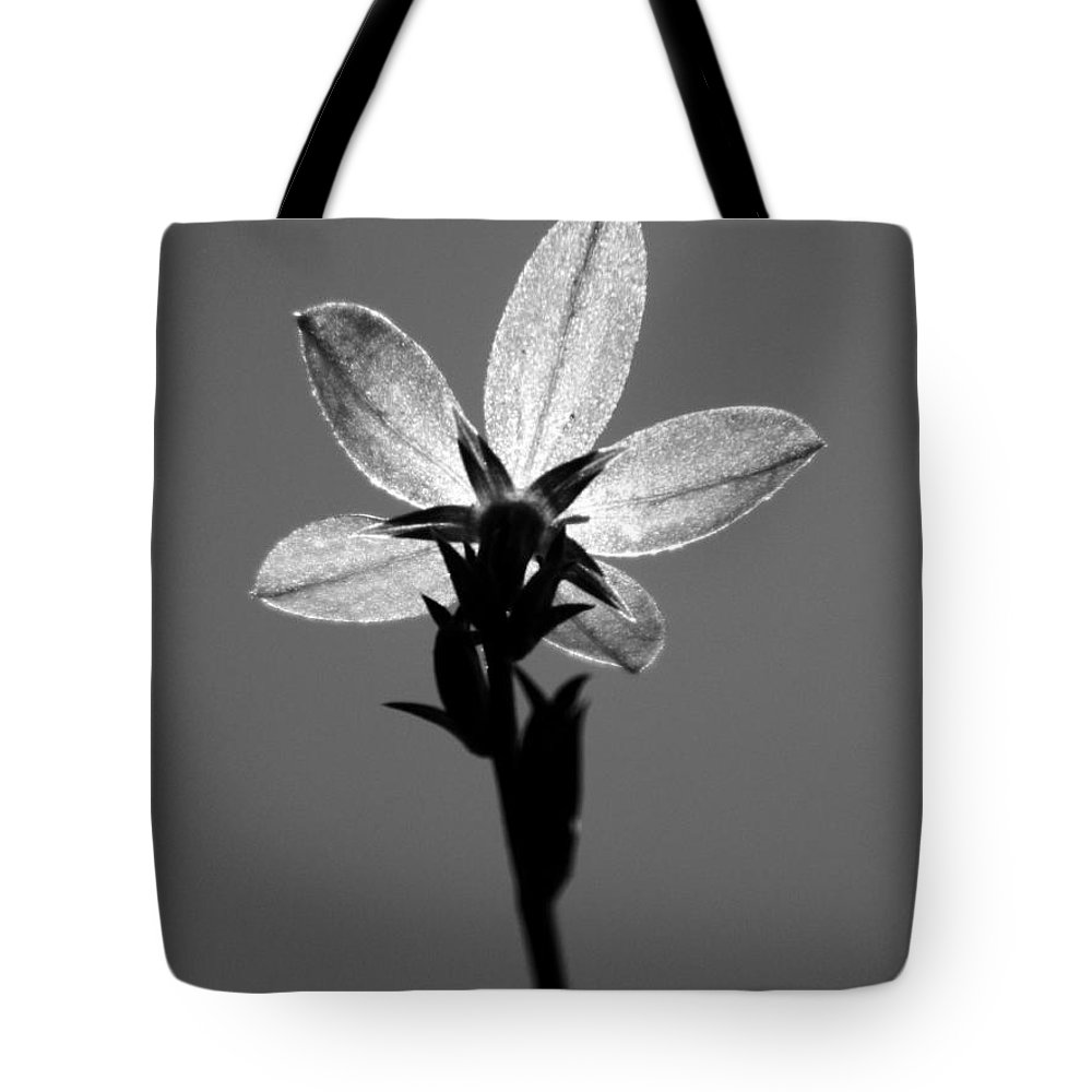 Flower Tote Bag featuring the photograph Alone by Andrea Anderegg