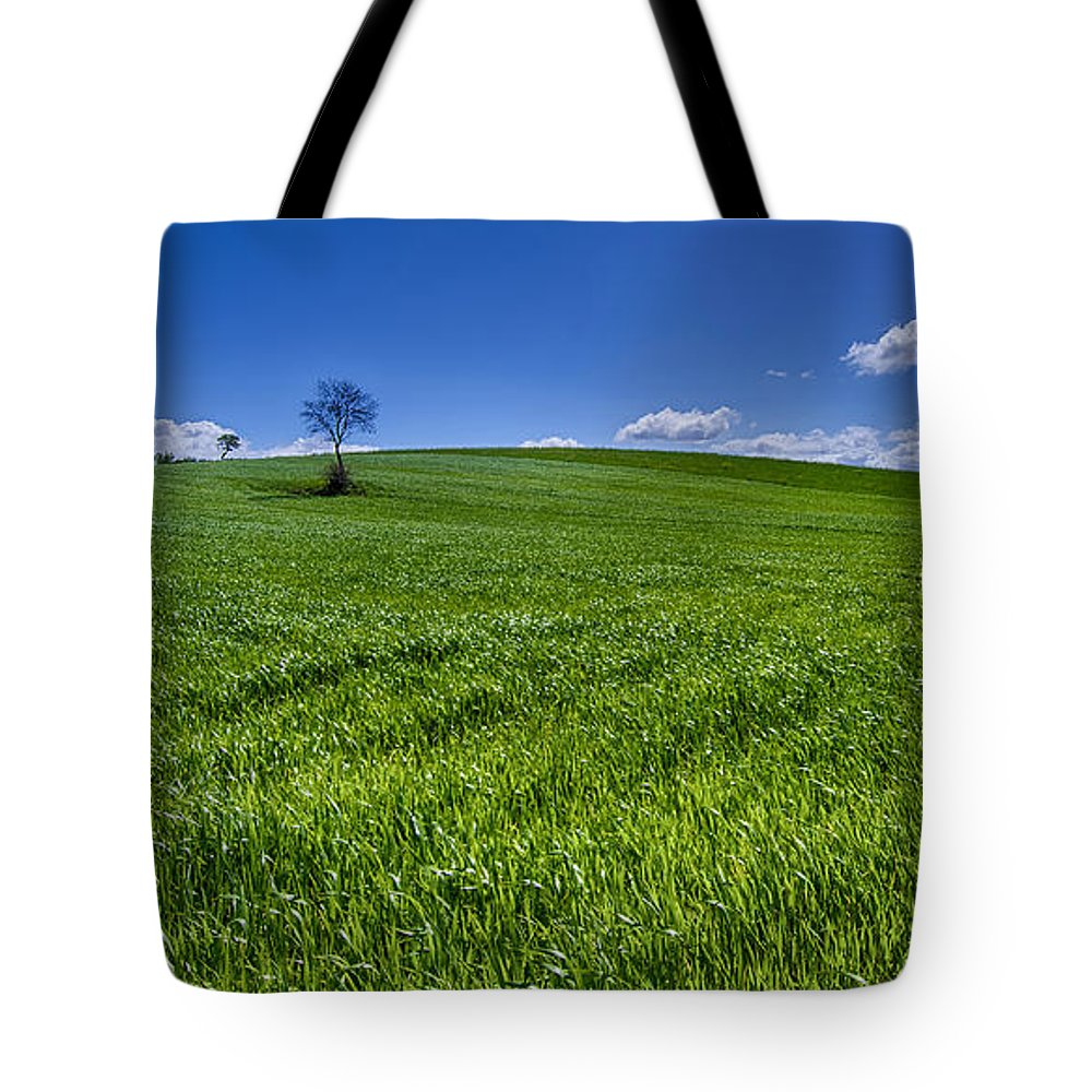 Alone Tote Bag featuring the photograph Alone by Giovanni Chianese