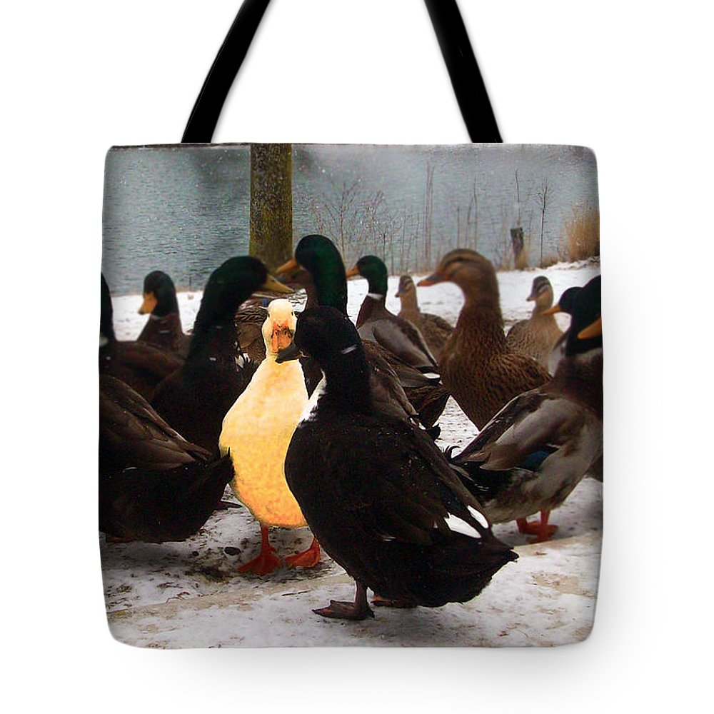 Snow Tote Bag featuring the photograph Alone In The Crowd by Kimberlee Marvin