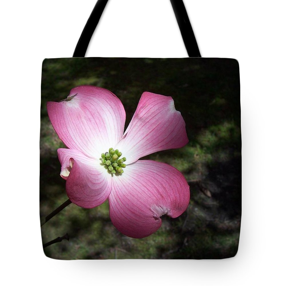 Nature Tote Bag featuring the photograph Alone by Maria Manna