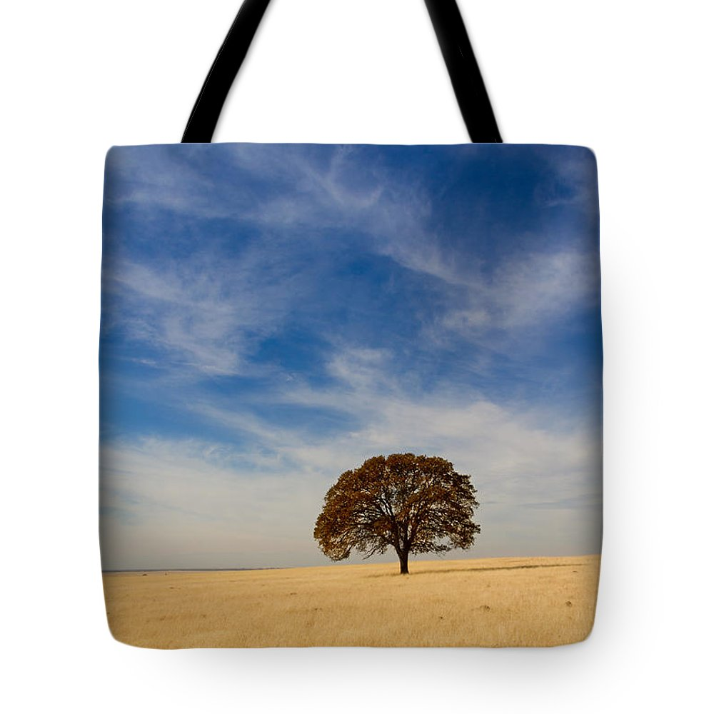 Tree Tote Bag featuring the photograph Alone by Robert Woodward