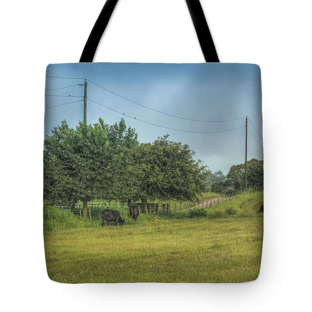 Florida Tote Bag featuring the photograph Along A Rural Road by Jane Luxton