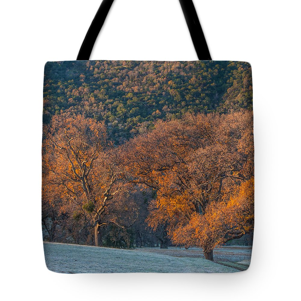 Landscape Tote Bag featuring the photograph Along Miwok Trail In Winter by Marc Crumpler