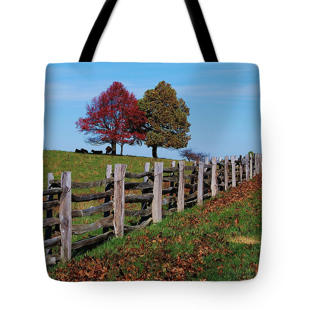 Trees Tote Bag featuring the photograph Along The Fence by Eric Liller