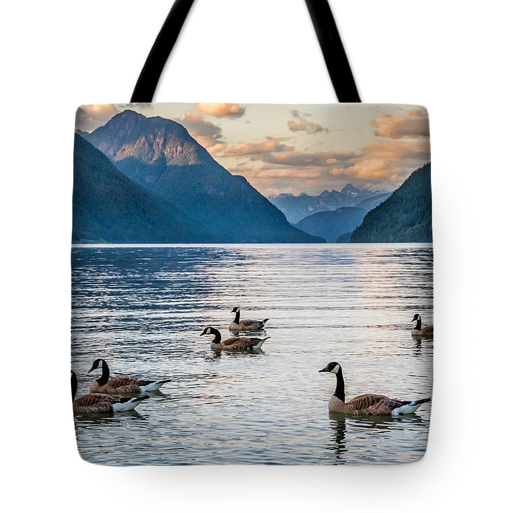Alouette Lake Tote Bag featuring the photograph Alouette Lake Geese by James Wheeler