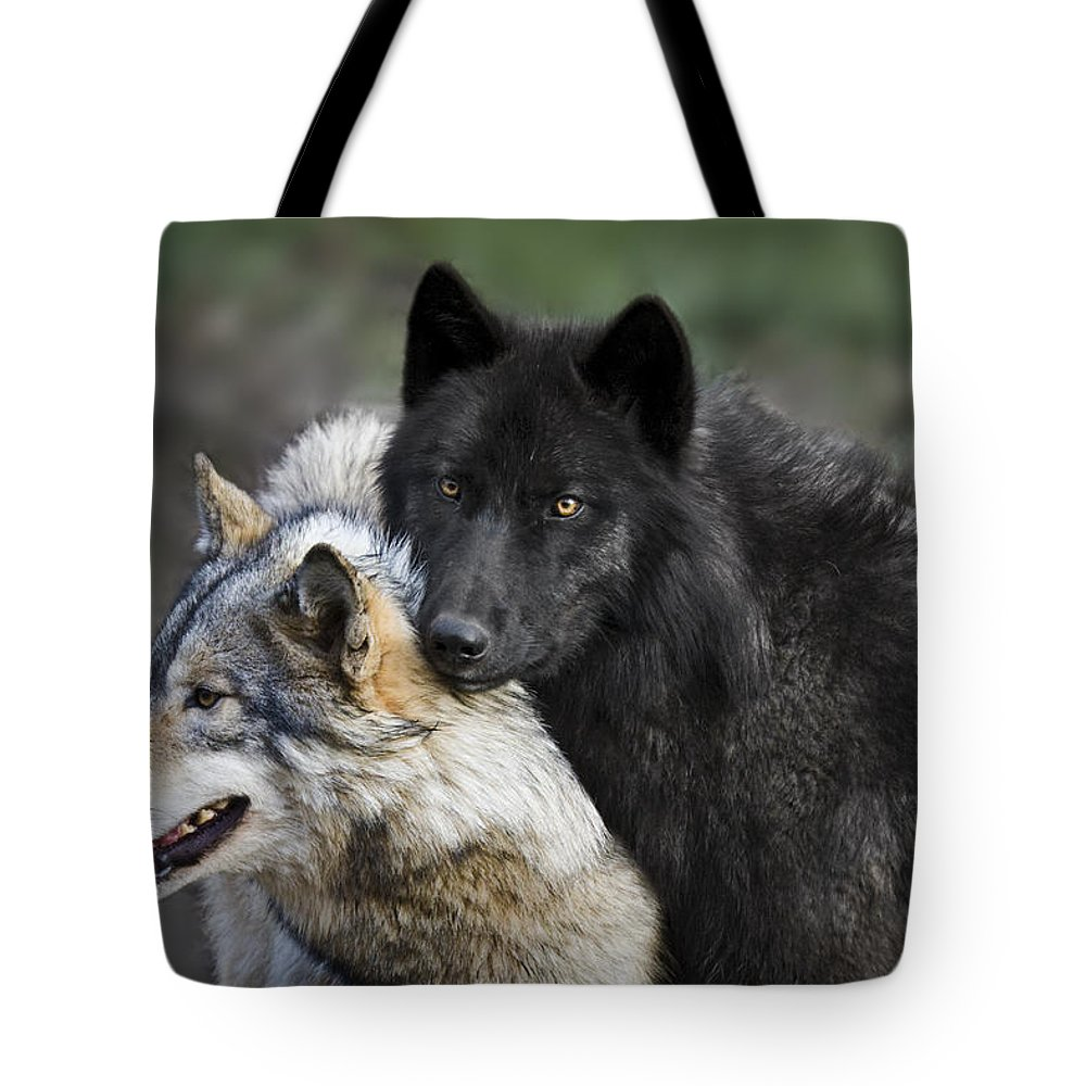 Alpha Couple Tote Bag featuring the photograph Alpha Couple by Wes and Dotty Weber