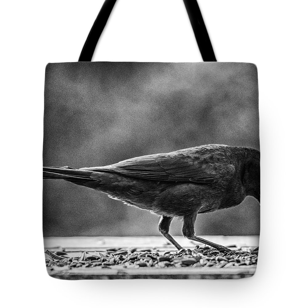 Grackle Tote Bag featuring the photograph Always Room For More by Susan Capuano