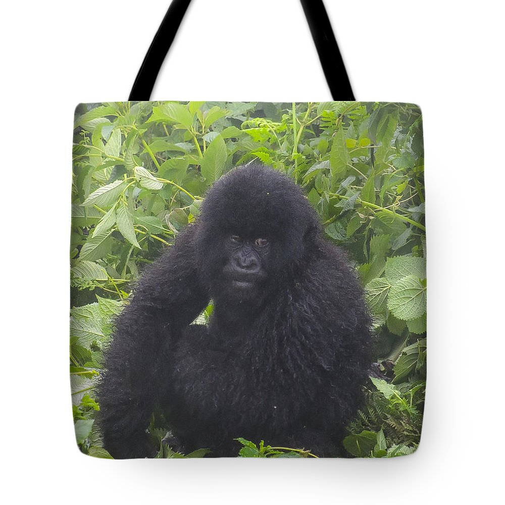 Rwanda Tote Bag featuring the photograph Am I In Trouble by Paul Weaver