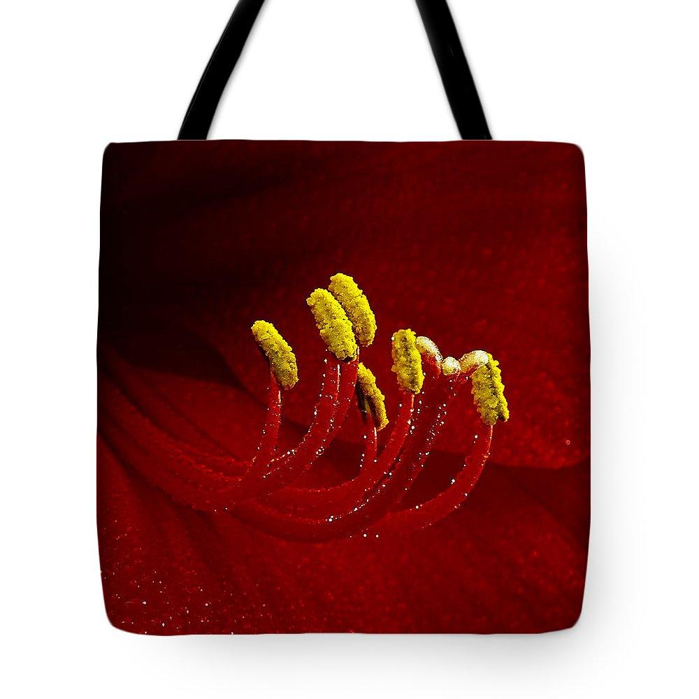Amaryllis Tote Bag featuring the photograph Amaryllis 2 by Ingrid Smith-Johnsen